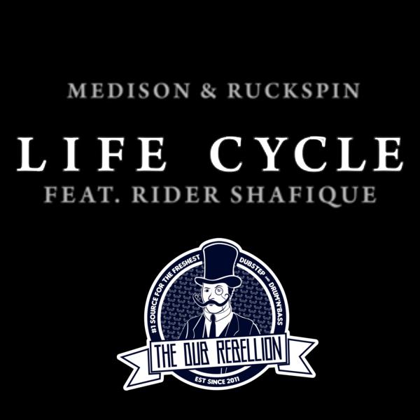 Medison & Ruckspin – <br>Life Cycle